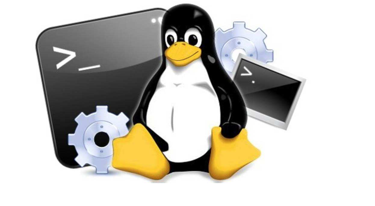 Linux 命令行下优雅的解析 JSON